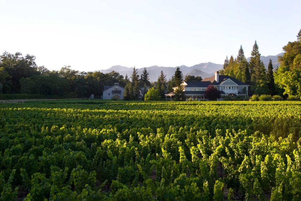 Duckhorn Vineyards, Napa Valley CA