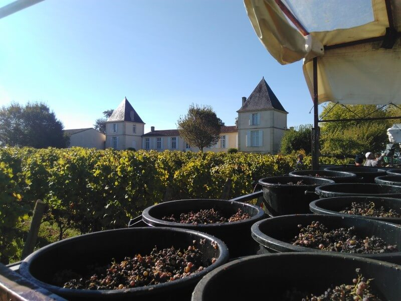 Chateau Climens Winery