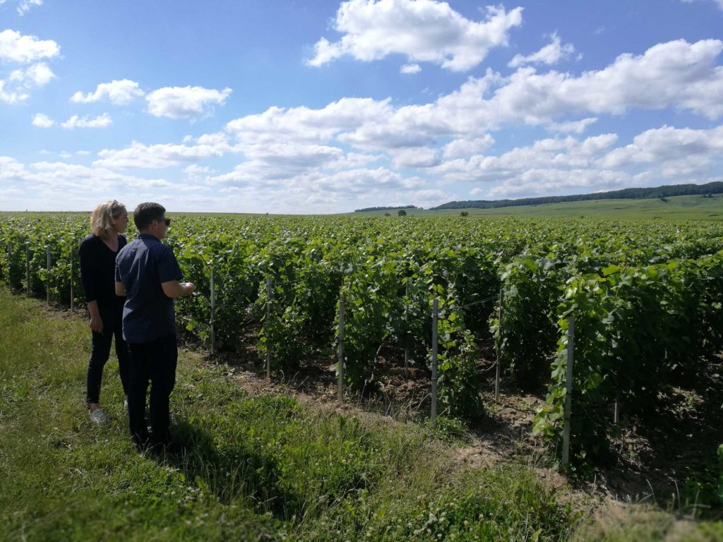 Brandon Nash visits the Egly-Ouriet vineyard