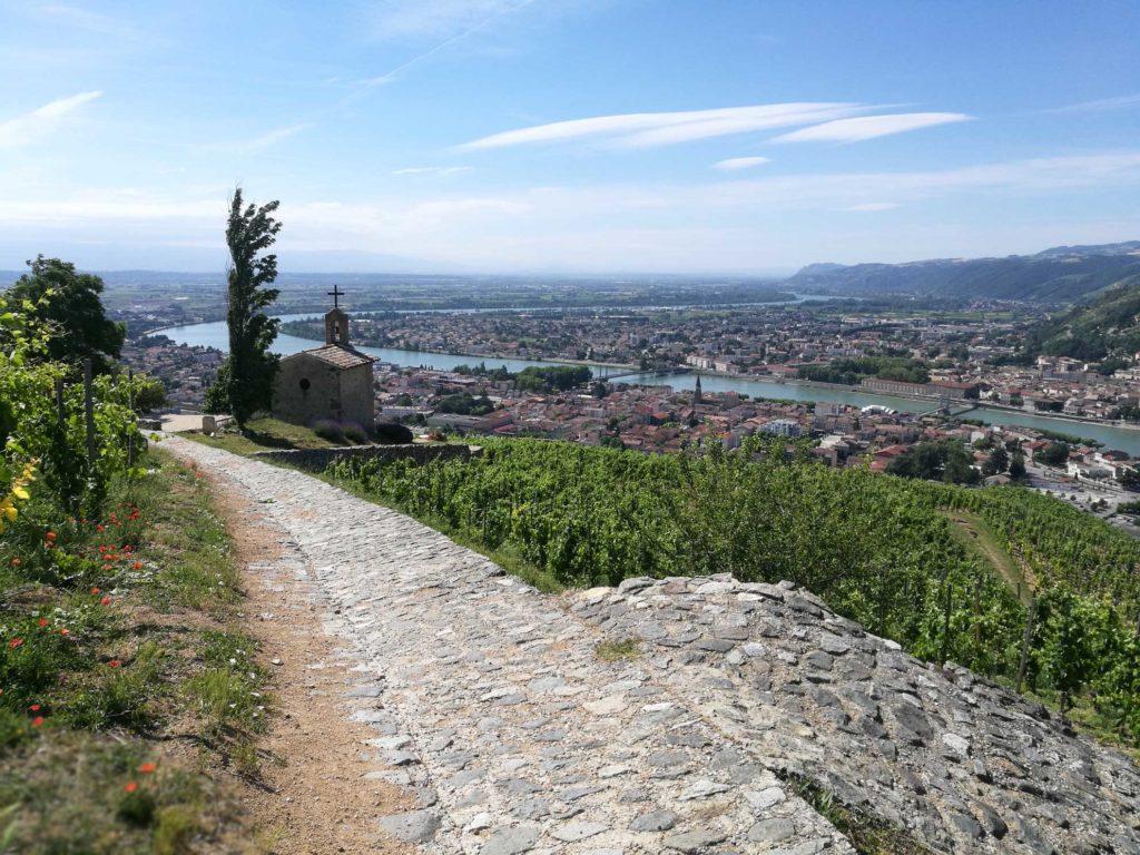 Paul Jaboulet Aine vineyard