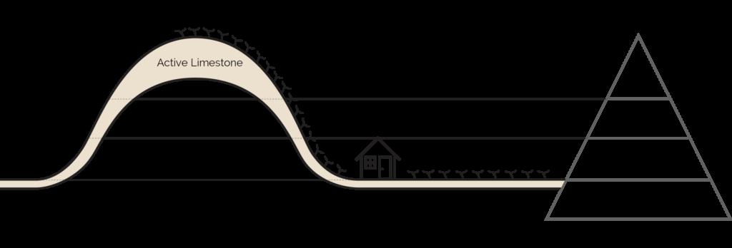 Mountford Estate Vineyard Hill Diagram