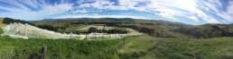 View of Waipara vineyard
