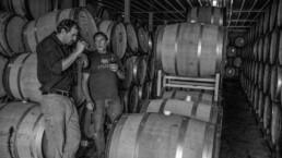 Men tasting wine in barrel room