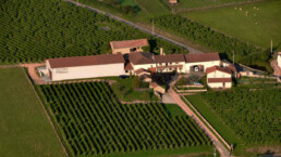 Aerial view of vineyard and winery
