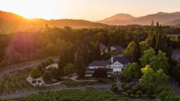 Photo of Duckhorn vineyard