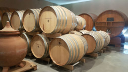 Wine barrels in barrel room
